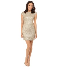 Adrianna Papell Sequin Chem Lace Shift Dress Gold Women's Dress