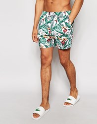 Another Influence Parrot Swim Shorts Green