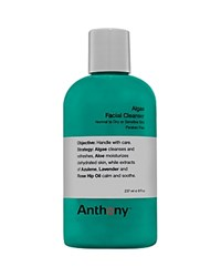 Anthony Logistics For Men Anthony Algae Facial Cleanser No Color