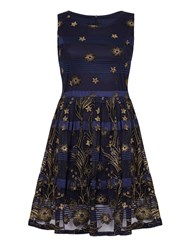 Mela Loves London Sheer Floral And Stripe Skater Dress Navy