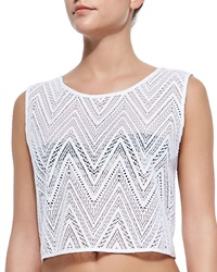 Milly See Through Crochet Coverup Crop Top