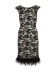 Gina Bacconi Lace Dress With Feathered Trim Black White