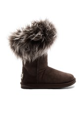 Australia Luxe Collective Foxy Short Shearling Boot Brown