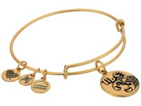 Alex And Ani Scorpio Iii Rafaelian Gold Bracelet