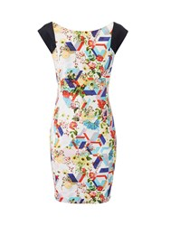 Lavand Cotton Floral Dress With Cap Sleeves Winter White
