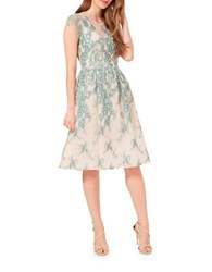 Miss Selfridge Lace Overlay Prom Dress Multi