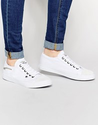 Bronx Washed Canvas Plimsols In White White