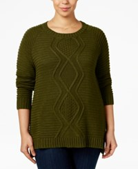 Ny Collection Plus Size Cable Knit Sweater Wild Sage