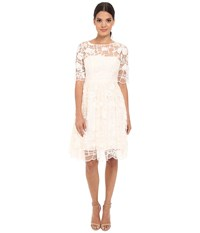 Adrianna Papell Embroidered Grid Party Dress Ivory Women's Dress White