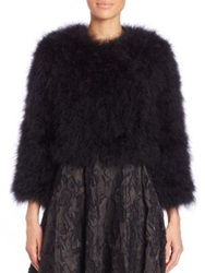 Bcbgmaxazria Margaret Cropped Feather Jacket Black