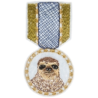 Sloth Medal X Coral And Tusk Buy Unique Art And Designer Products Shipped Worldwide Third Drawer Down