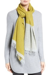 Eileen Fisher Women's Recycled Cashmere Blend Colorblock Scarf Fern