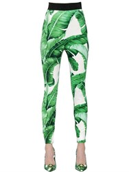 Dolce And Gabbana Leaves Printed Viscose Cady Pants