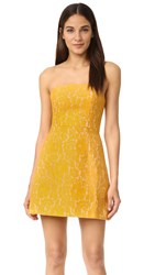 Keepsake Every Way Lace Mini Dress Mustard