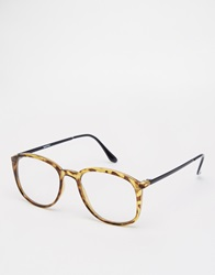 Spitfire Clear Lens Round Glasses Brown