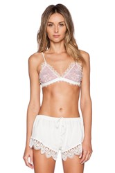 Lovers Friends Lovely Lace Bra Ivory