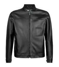 Pal Zileri Leather Blouson Zip Jacket Male