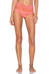 Only Hearts Club So Fine Lace Cheeky Brief Coral