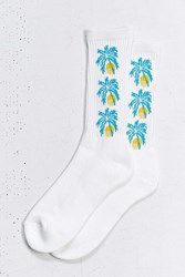 Urban Outfitters Tropical Icon Sock White