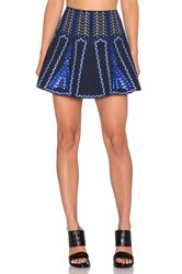 Bcbgmaxazria Bronwyn Embroidered Mini Skirt Blue