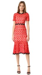 Jill Stuart Floral Lace Dress Cherry Red Black