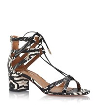 Aquazzura Beverly Heels Sandals Female Black