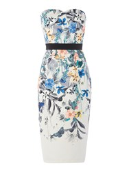 Little Mistress Strapless Midi Bodycon Dress Multi Coloured