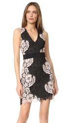 Alice Olivia Patrice Aline Lace Dress Black Nude Pink