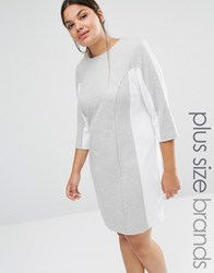 Carmakoma Shift Dress With Contrast Panels Grey