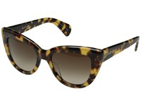 Paul Smith Lovell Spotty Tortoise Umber Gradient Fashion Sunglasses Brown