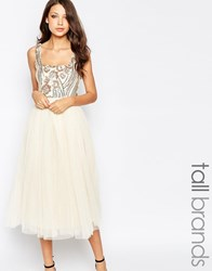 Little Mistress Tall Sequin Bodice Tulle Prom Dress Cream