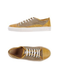 Gold Brothers Low Tops And Trainers Camel