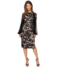 Gabriela Cadena Paneled Lace Cocktail Dress With Chiffon Sleeve Overlay Black Women's Dress