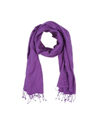 Daniele Alessandrini Oblong Scarves Purple