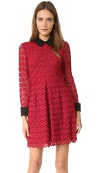 Jill Stuart Venice Lace Collared Dress Currant