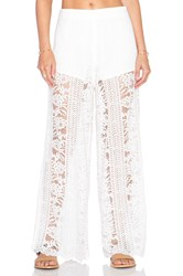 Endless Rose Lace Pant Cream