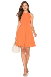 Lucy Paris Laura Flare Dress Rust