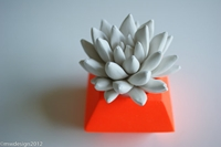 White Succulent Sculpture In Modern By Waterstonesucculents