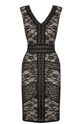 Oasis Sexy Lace Dress Black