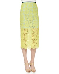 Preen By Thornton Bregazzi Floral Scalloped Lace Pencil Skirt