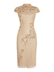 Adrianna Papell Mandarin Collar All Over Beaded Dress Champagne