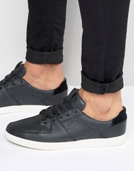 Boxfresh Cladd Leather Trainers Black