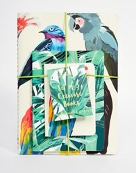 Paperchase Let's Squawk Pack Of 3 Exercise Books A5 A6 A7 Multi
