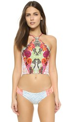 Maaji Baroque Rocks Crop Bikini Top