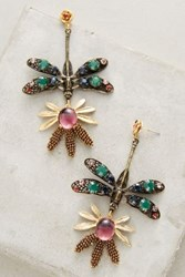 Anthropologie Beaded Dragonfly Drops Gold