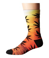 Huf Maui Waui Plantlife Crew Sock Sunset Men's Crew Cut Socks Shoes Multi