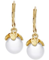 Lonna And Lilly Imitation Pearl Vine Inspired Drop Earrings Gold