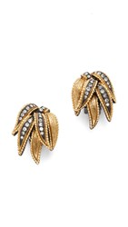 Elizabeth Cole Leah Clip On Earrings Golden Glow