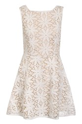 Quiz Cream Crochet Pearl Skater Dress