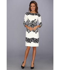 Adrianna Papell Fitted Placed Printed Lace Ivory Women's Dress White